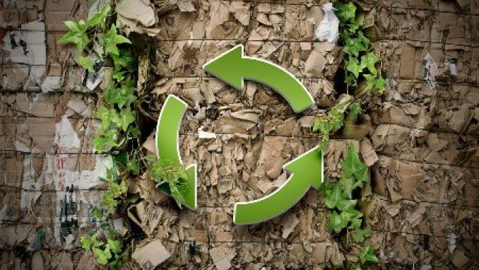 Webinar - Circular economy in global value chains